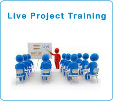 live project traning